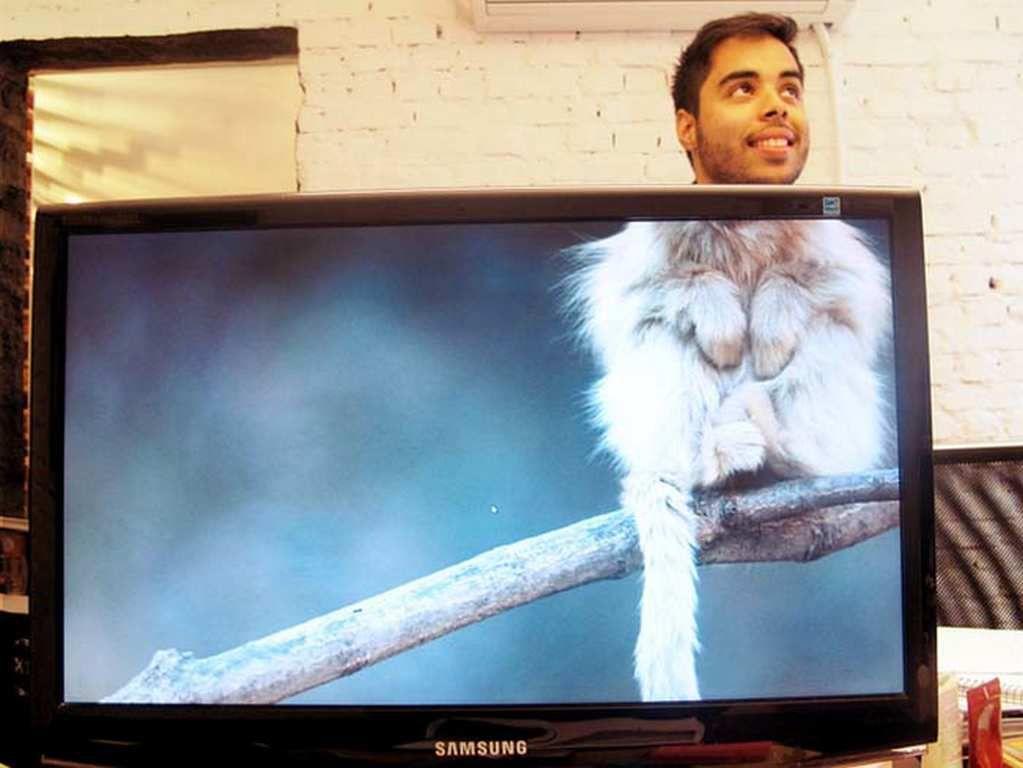 Un Safari entre collègues de bureau (15 Photos)