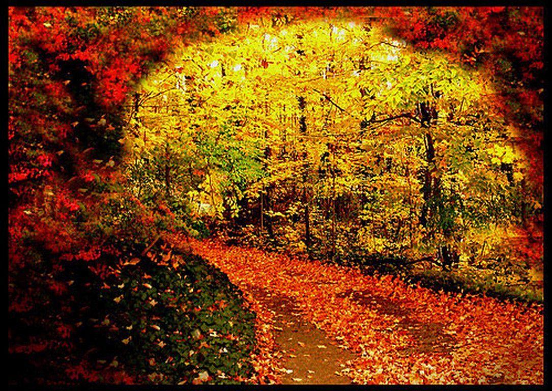 La beauté est partout dans la nature (63 Photos)
