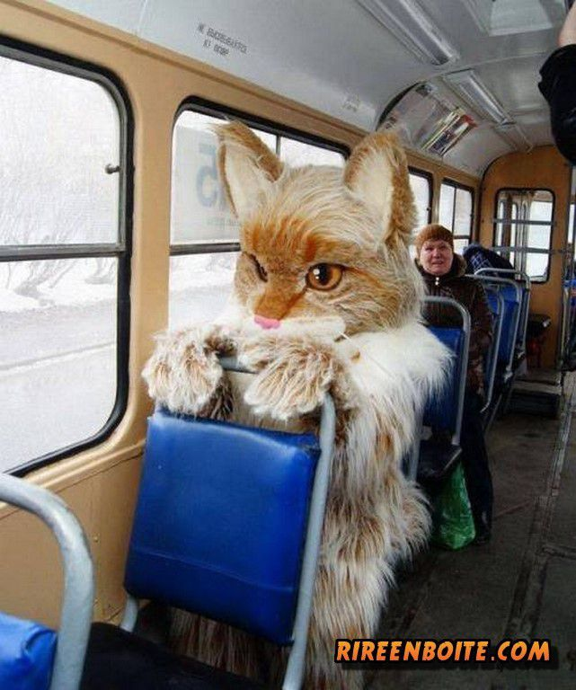 Il était une fois en Russie (36 Photos)