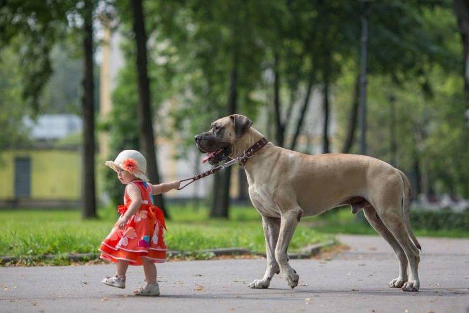 Nos amis, les animaux(quand ils font semblant d'être bête) - Page 10 Ob_b5c98e_galerie-images-droles-insolites-et-s