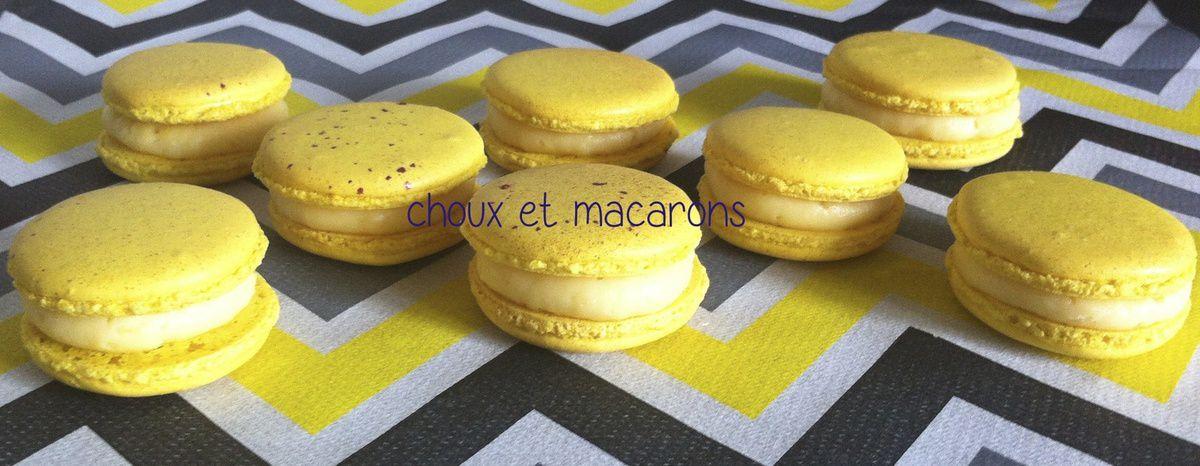 Macarons au citron et aux myrtilles