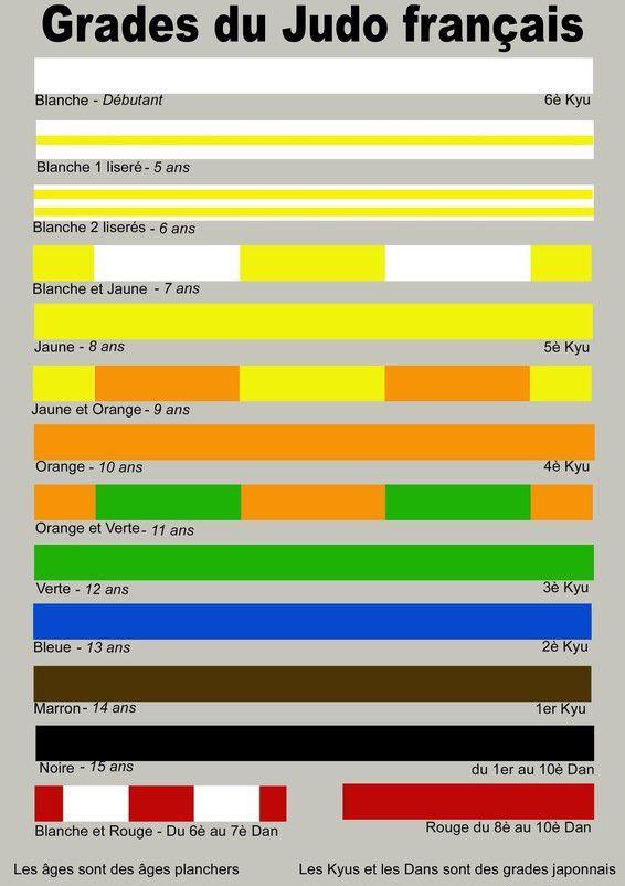 charme de coût couleur rapide grande remise pour Les ceintures au judo - CEBAZAT JUDO