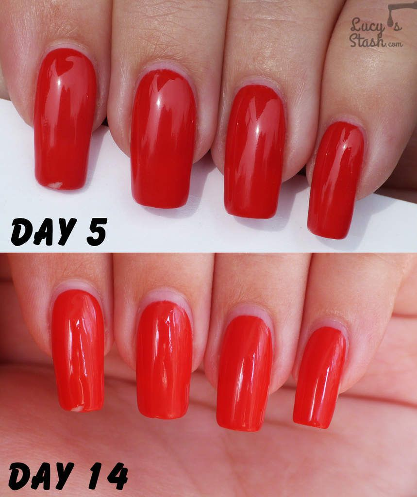 Turn any nail polish into gel polish with Gelibility! Review &amp&#x3B; wear test