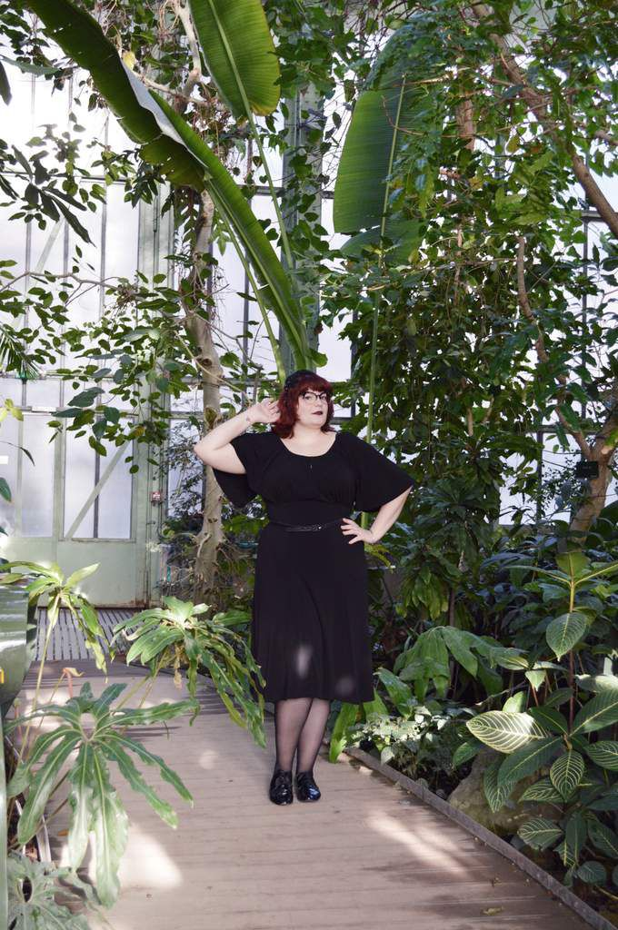 Pinup Girl Clothing: la Butterfly Dress