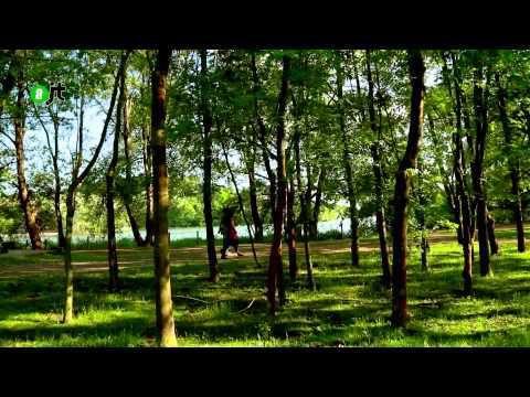 « Central Park » à la Courneuve, le mépris des classes populaires