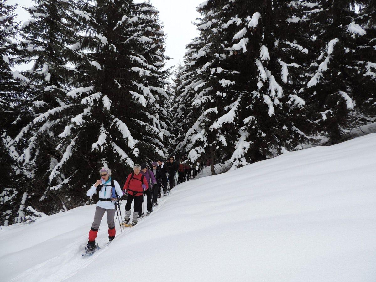 Groupe 2 : La montée aux Avenières et au pied du Treu