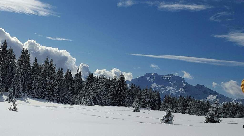 Le bonheur dans la poudreuse        La Tournette aux courbes adoucies par son manteau de neige