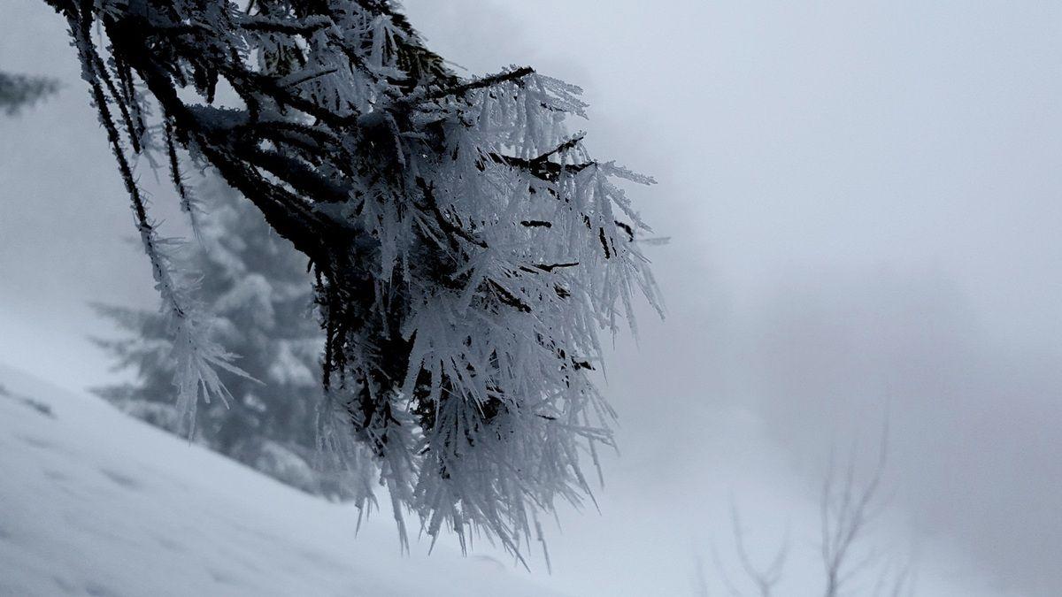 Chalet du Mont et Col des Nantets depuis Montremont avec l'ADAPAR le 19.02.16