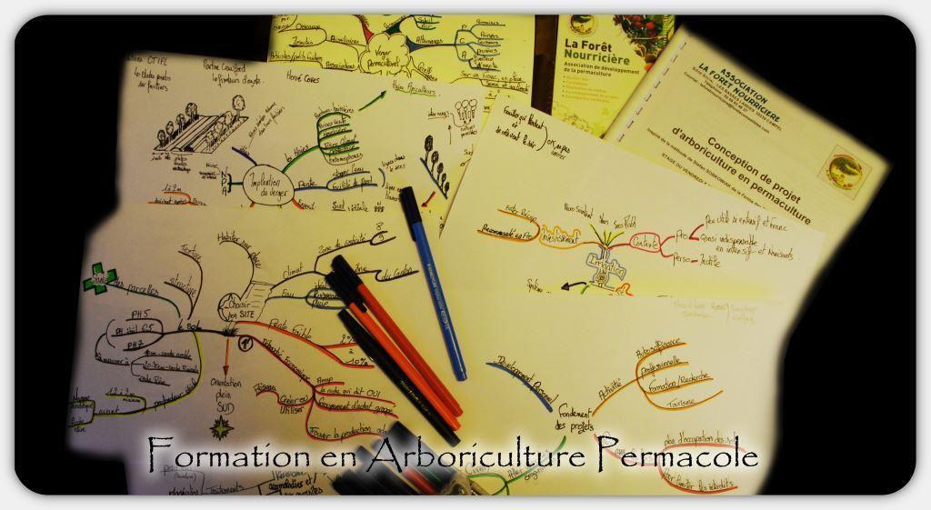 Formation : Projet d'arboriculture en permaculture