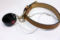 Les colliers connectés pour nos animaux