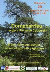 CORNEBARRIEU - 27ème FOIRE AUX PLANTES, ARBRES ET PRODUITS REGIONAUX