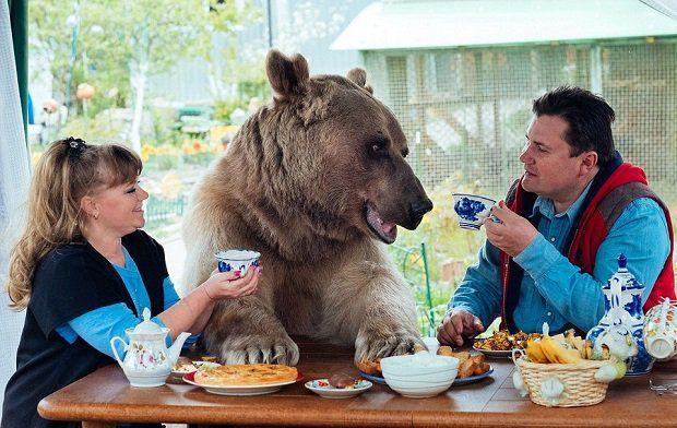 Cet ours vit avec ce couple, et c'est tout à fait normal (pour eux) !