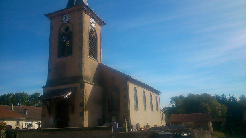 Mystère dans les Vosges : des dizaines de milliers de mouches envahissent trois églises
