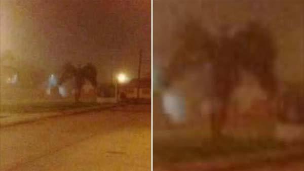 Une créature démoniaque ailée repérée en train de marcher dans les rues d'une ville en Arizona (vidéo)
