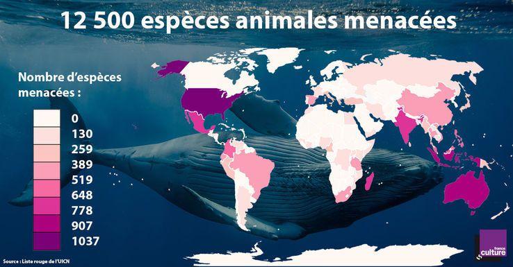 750 espèces animales disparues, 2 700 en voie d'extinction, 12 500 menacées