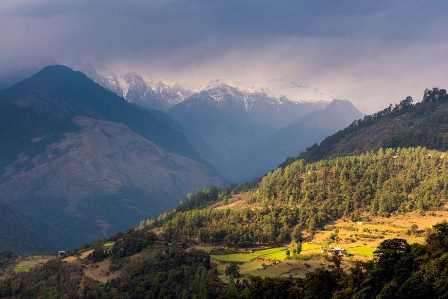 Comment l'un des plus petits pays au monde est devenu leader en matière d'écologie