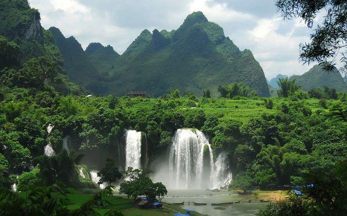 Découverte de 467 millions d'hectares de forêt équivalent à l'Amazonie