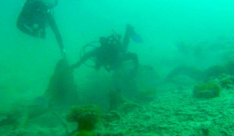 Une mystérieuse forêt sous-marine témoigne d'un changement climatique brutal