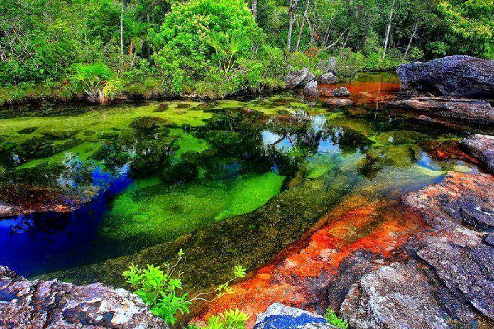 Colombie : le ruisseau des cristaux est la rivière la plus belle du monde