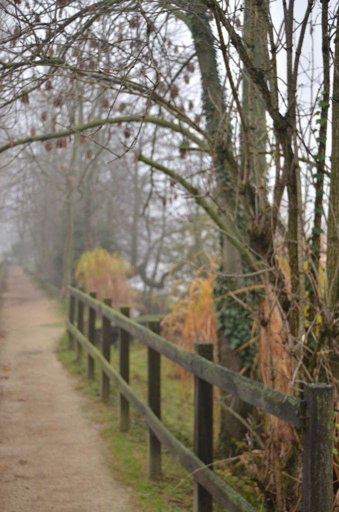 Joinville le Pont  sous la brume ( Bords de Marne) - Photo de © Jean-Claude Baquiast