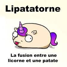 Unipotatorn - the fusion between a unicorn and a potatoe XD
