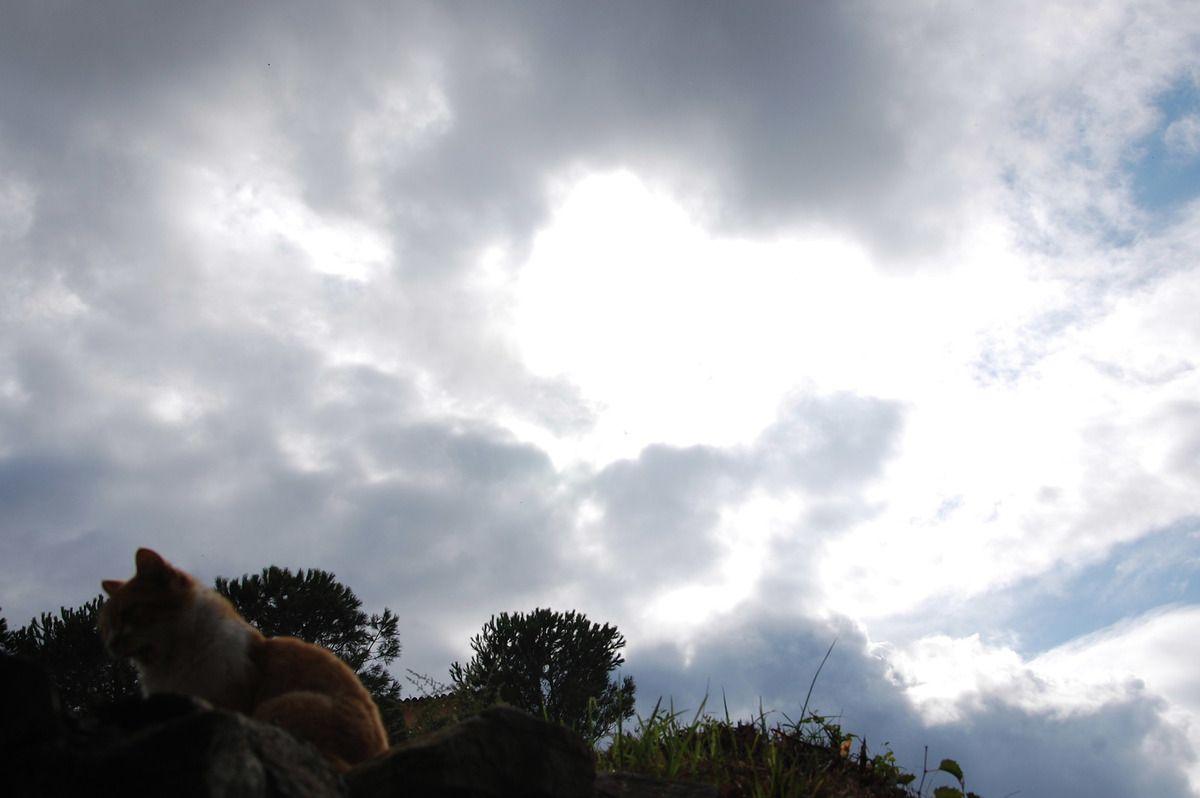 Un ciel et tranquille la belle chachourite.