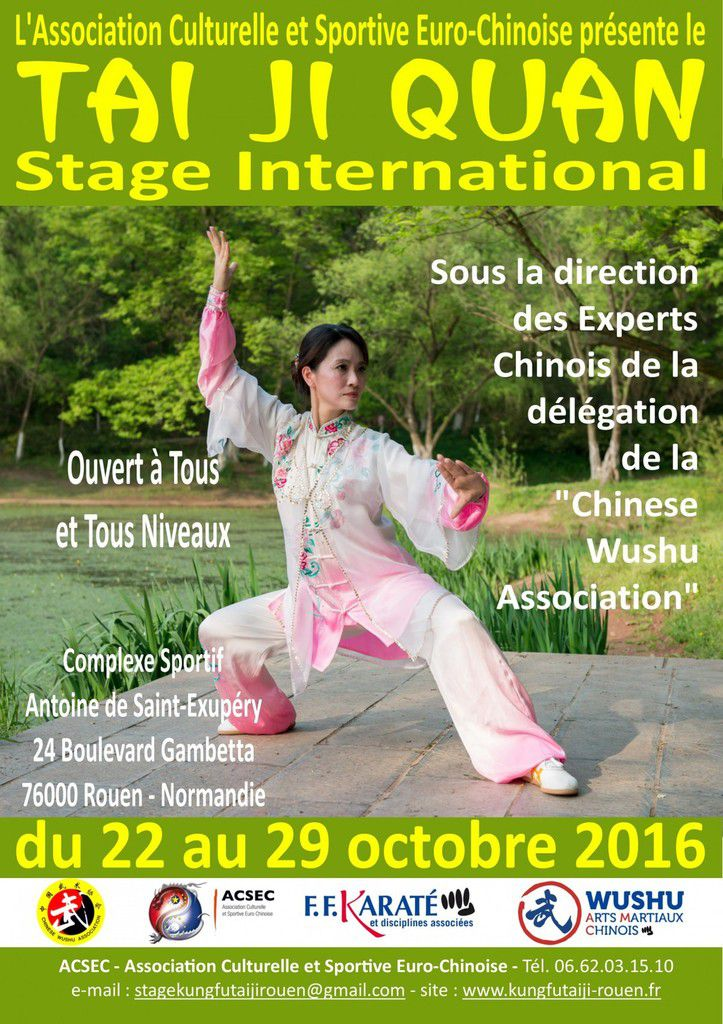 Stage international de Tai Ji Quan à Rouen