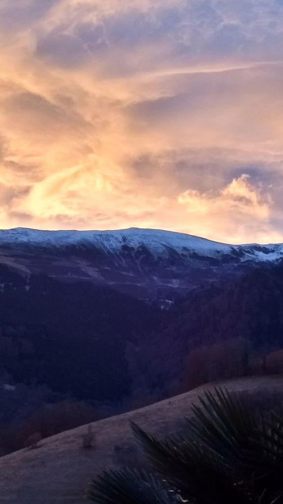 Un paysage haut en couleurs, au gré des saisons