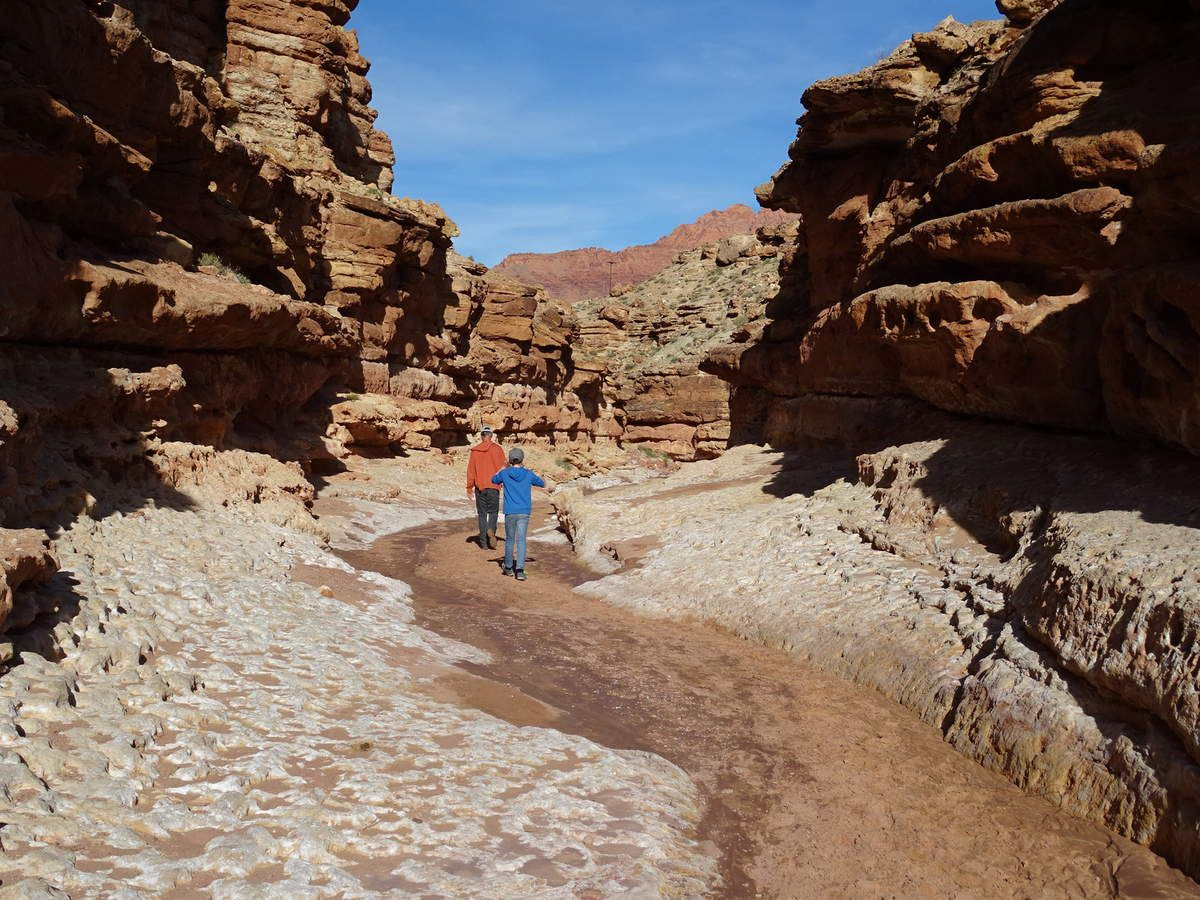 Trail dans Cathedral Wash