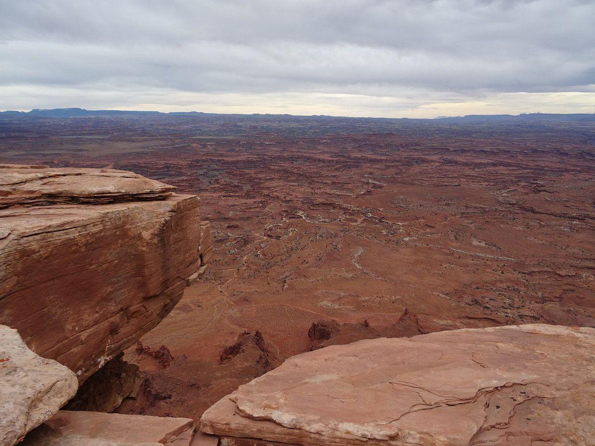 Canyonlands depuis Needles overlook