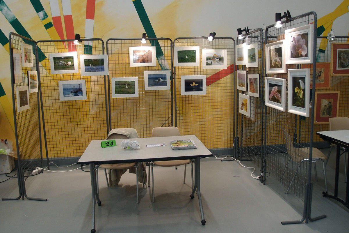 L'expo !