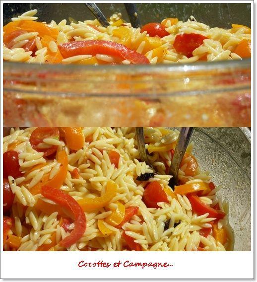 Salades de pâtes Avoines aux poivrons grillés