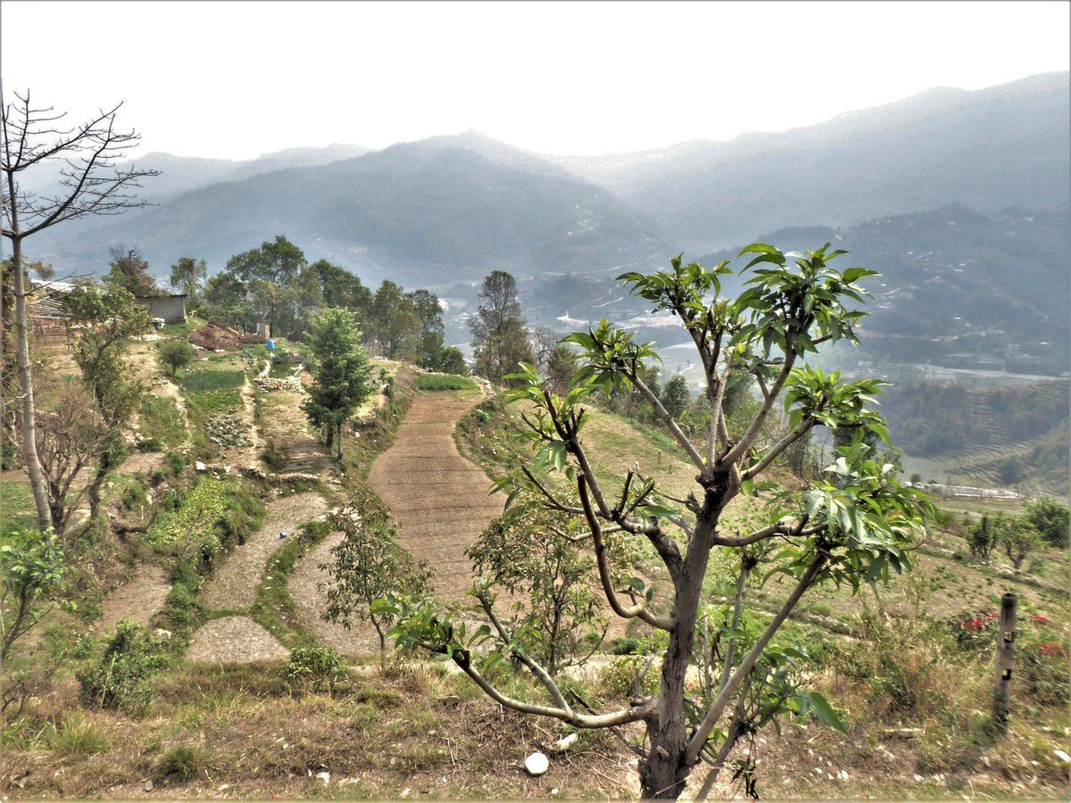 Dans la campagne autour de Pokhara