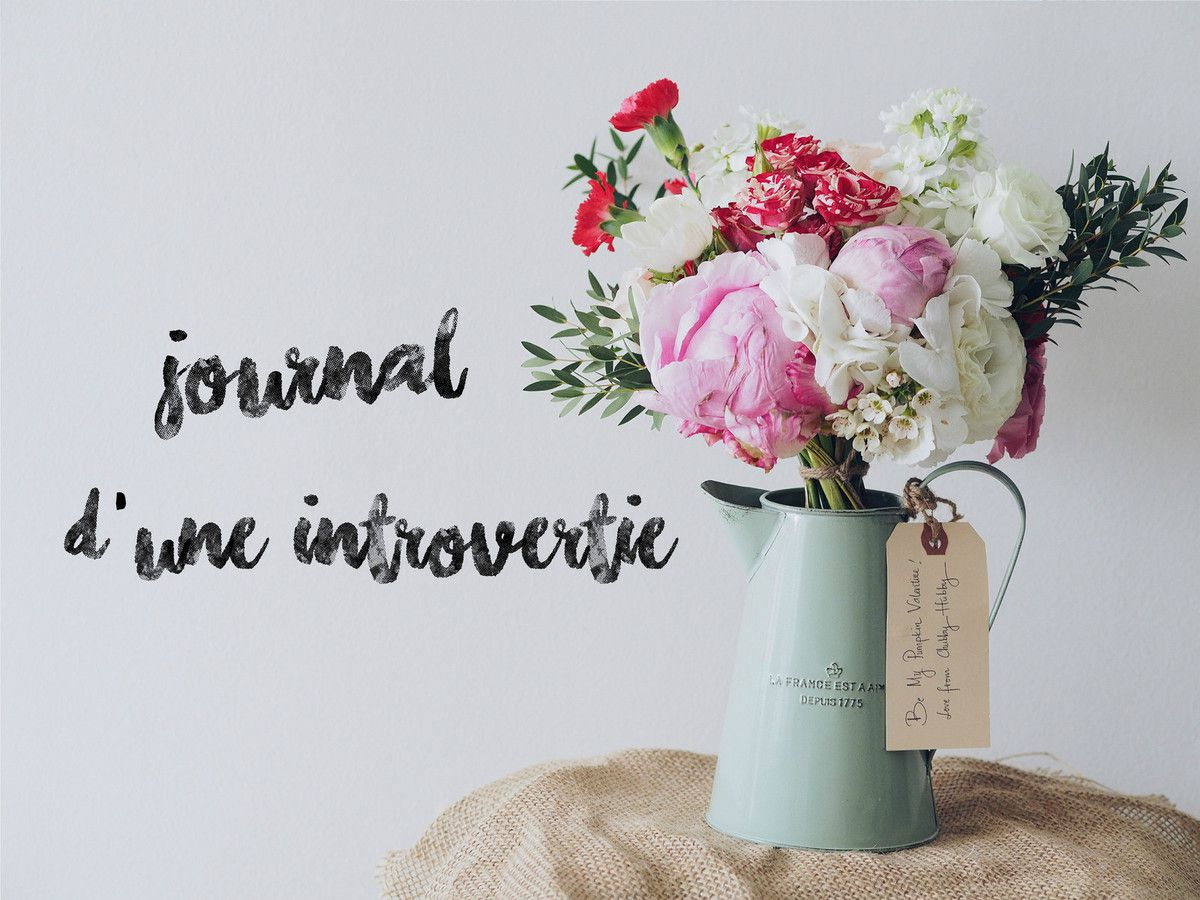#Journal d'une introvertie (8)