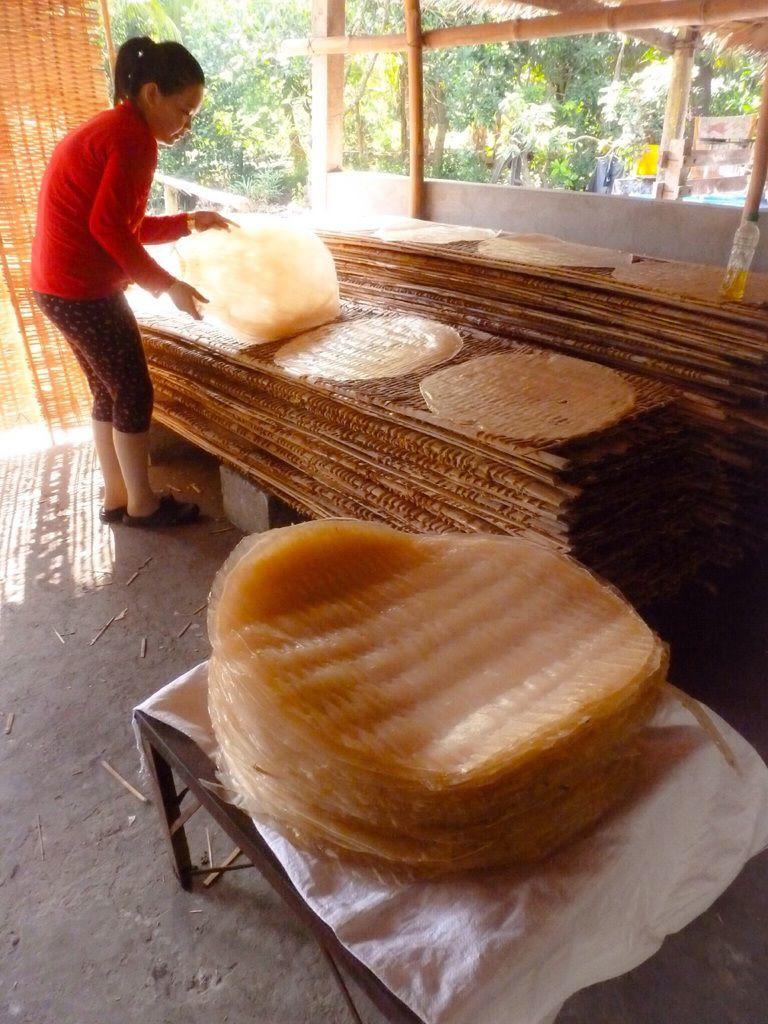 """Visite d'une fabrique de """"noodles"""". Après avoir fait sécher de grandes galettes de riz, celles-ci sont découpées en lanières. Tout est fait à la main, la cosse du riz sert de combustible pour chauffer les galettes."""