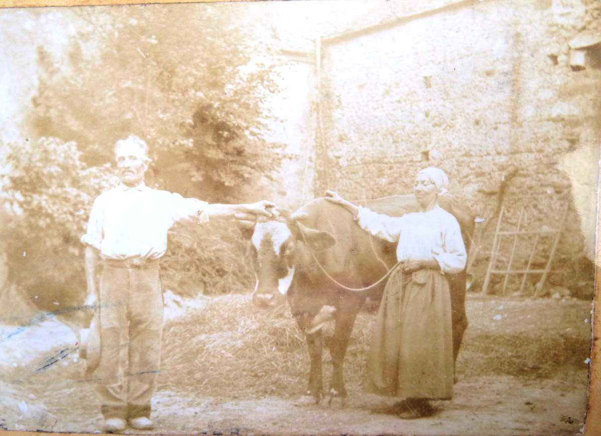 une bricole: une vache, un âne, un ou deux arpents de vigne pour faire du vin blanc destiné à Paris