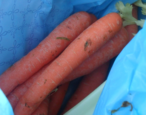 (Voici les dernières carottes que j'ai achetées au marché).