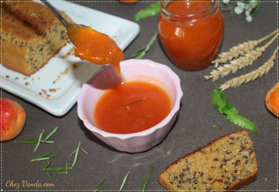 confiture abricot guy demarle