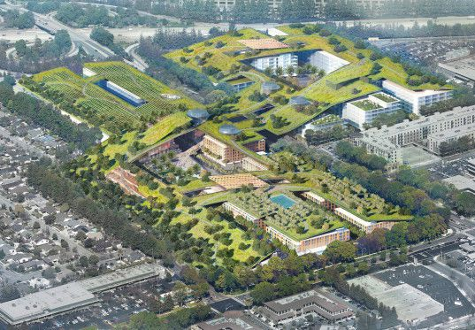 World's largest green roof unveiled in the heart of Silicon Valley