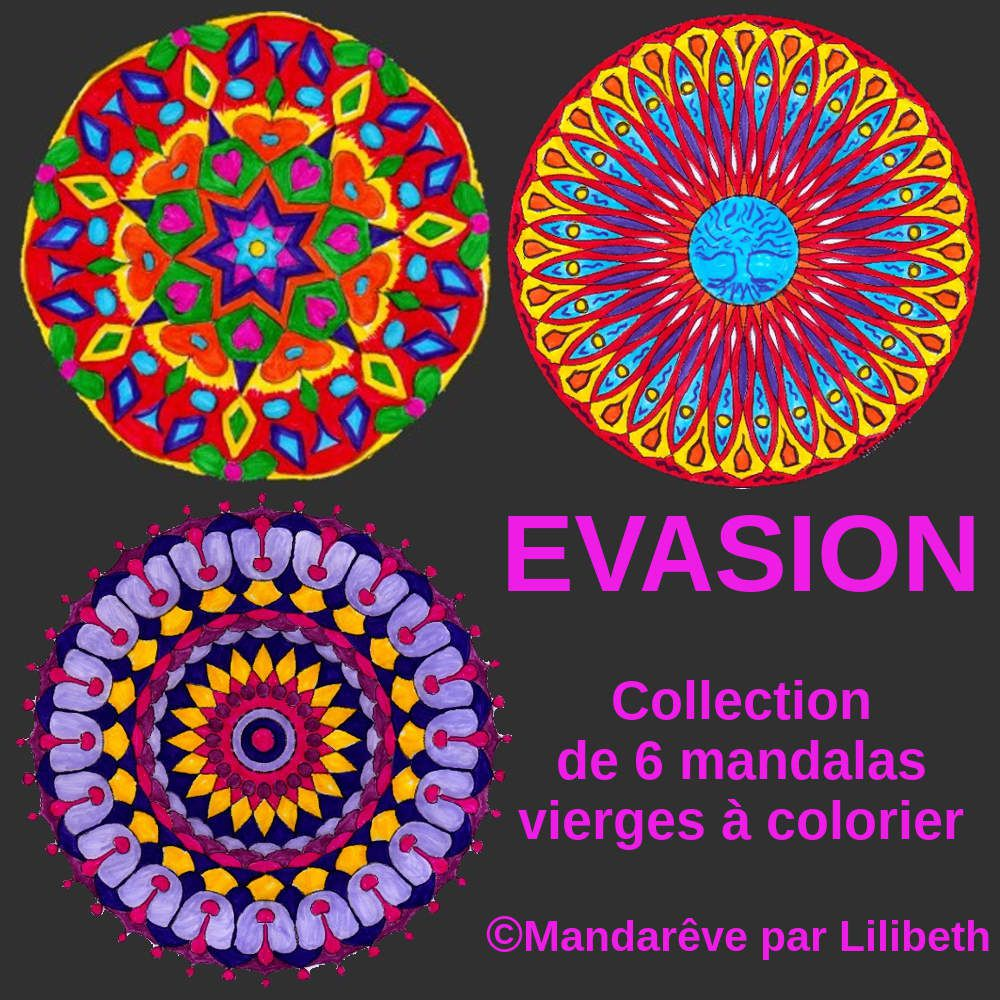 mandalas originaux colorier collection evasion compos e de six grands mod les vierges tali. Black Bedroom Furniture Sets. Home Design Ideas