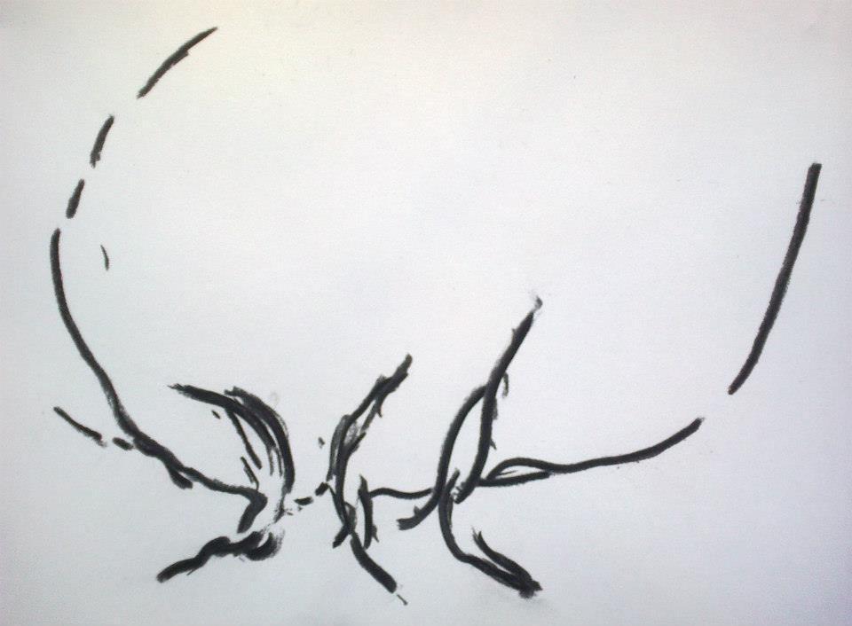 """Extraits  des études de danses du fusain"""" Deux """" . 2014 ( 90 danses )"""