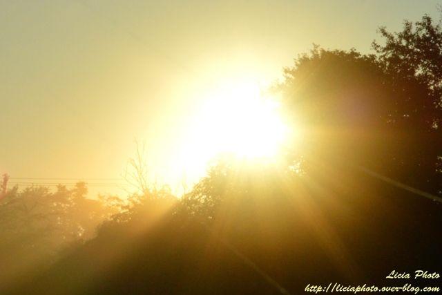 Premiers rayons de soleil