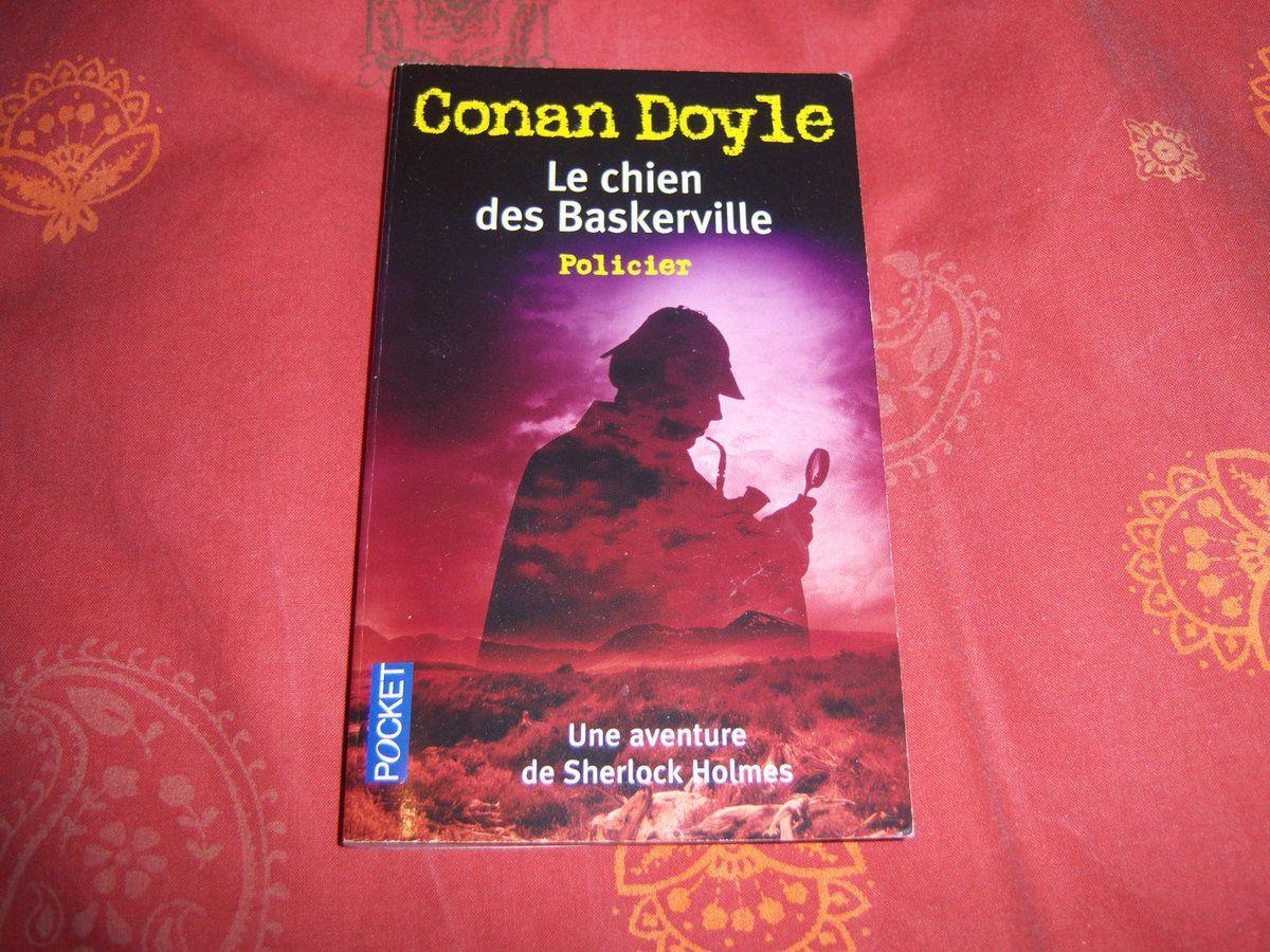 Le livre en version Pocket.