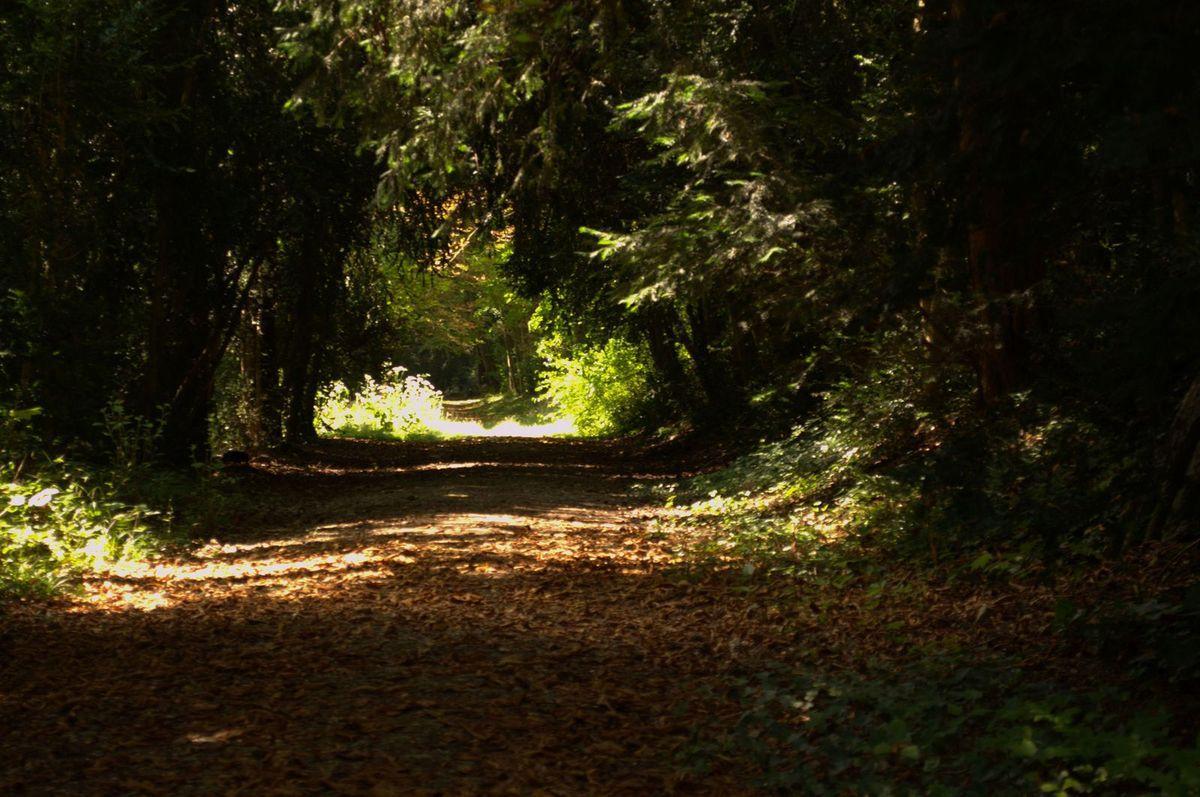 Sortie au parc Faucigny-Lucinge de Melun