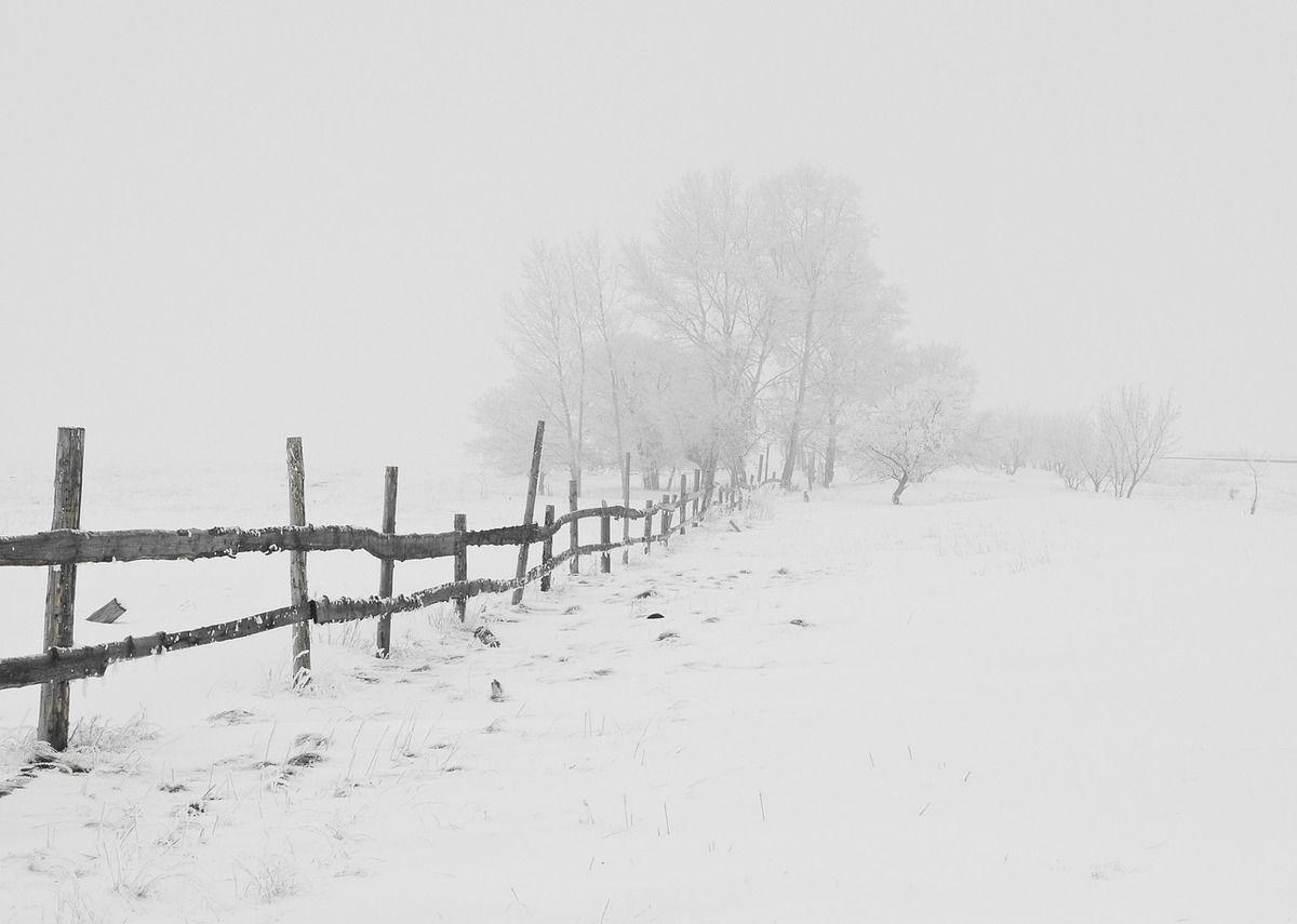 Par contre, elle est très photogénique, la neige !