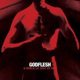 [Godflesh - a world lit only by fire LP - 2014]