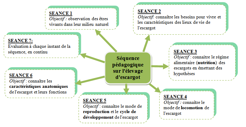 Séquence Escargot le vivant