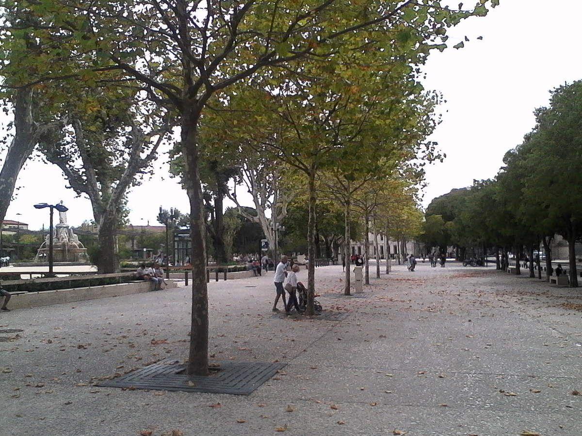 Nîmes la ville mondialement reconnue par son histoire et sa culture romaine
