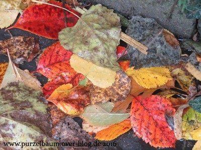 Verregneter Oktobersamstag