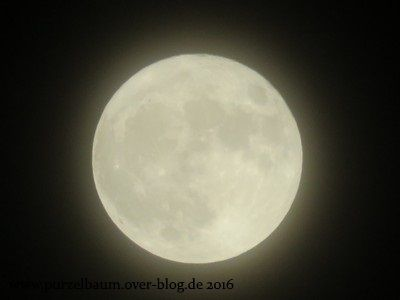 Supervollmond am 14. November 2016
